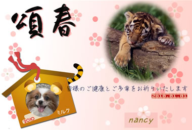 Blog_380px