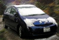 ぷりちゃん、初めての雪